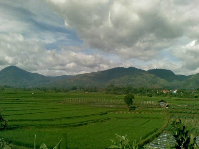 view dari jendela 1.jpg